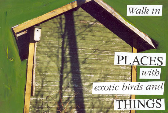 exotic-birds-and-things-walk-in